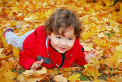Little curly-haired girl lies on yellow maple leaves Royalty Free Stock Image