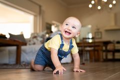 Little cute baby crawling at home. Crawling baby boy at home on floor. Excited little boy in dungaree crawling on wooden floor looking up. Happy toddler walking royalty free stock photography