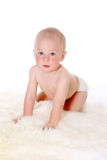 Little cute baby crawling, isolated on white background Stock Photo