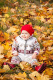 Little cute baby girl in autumn leaves royalty free stock photography