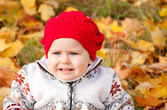 Little cute baby girl on a background of autumn leaves.  Stock Image