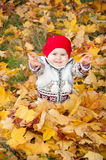Little cute baby girl on a background of autumn leaves.  Royalty Free Stock Images