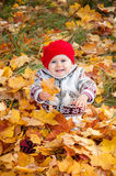 Little cute baby girl on a background of autumn leaves. Royalty Free Stock Image