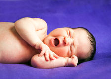Little cute baby Royalty Free Stock Photography
