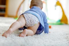 Little cute baby girl learning to crawl. Healthy child crawling in kids room with colorful toys. Back view of baby legs. Cute toddler discovering home and Royalty Free Stock Image
