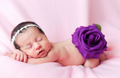Little cute baby girl on a pink background Royalty Free Stock Photos