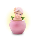 Little Cute Baby in Pink Flower Pot Stock Image