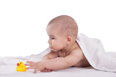 Little cute baby playing with yellow duck after shower, isolated Royalty Free Stock Image