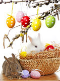 Little cute baby rabbits and painted easter eggs Royalty Free Stock Photography