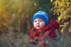 Little cute baby siting in the grass. Lifestyle, fashion and trendy style. Advertising clothes. Autumn collection. Walk in autumn park in rainy weather. Retro Royalty Free Stock Images