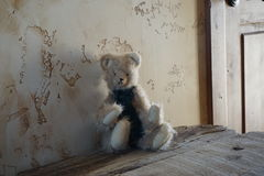 little cute bear toy Stock Images