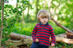Little cute blond kid boy having fun in summer forest. Stock Image
