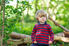 Little cute blond kid boy having fun in summer forest. Royalty Free Stock Photo
