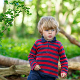 Little cute blond kid boy having fun in summer forest. Royalty Free Stock Images