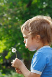 Little cute boy is blowing a dandelion. Outdoors Royalty Free Stock Image