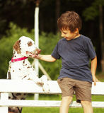 Little cute boy with dalmatian dog Royalty Free Stock Photo