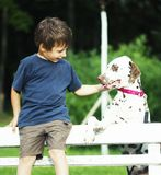 Little cute boy with dalmatian dog Royalty Free Stock Images