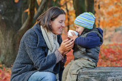 Little cute boy drinks tea with her mother Stock Images