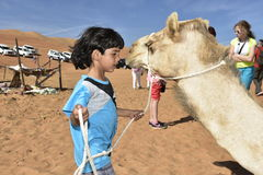 Little Cute Boy with Dromedary in the Wahiba Sands Desert, Oman Royalty Free Stock Photography