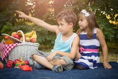 Little cute boy and girl sit on a blanket in the grass and play Stock Photos
