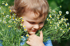 Little cute boy holding a bouquet of daisies Stock Photography
