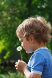 Little cute boy holding a dandelion Stock Image