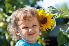 Little cute boy holding a sunflower on a sunny day Stock Photos