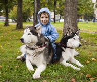 Little cute boy with husky two dog in green park playing, smiling happy Stock Photo