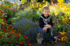 Little cute boy sitting in the flower garden. Happy. Stock Images