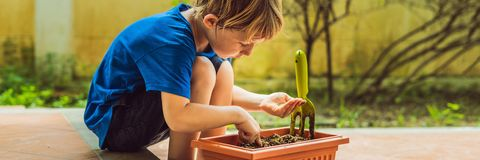 Little cute boy sows seeds in a flower pot in the garden BANNER, LONG FORMAT stock image