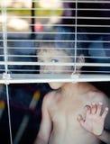 Little cute boy throught window Stock Image