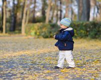 Little cute boy walks Stock Photo