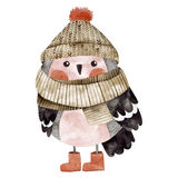 Little cute bullfinch with winter hat and scarf Stock Image