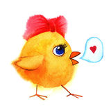 Little cute chicken with red bow. Watercolor hand painted illustration. Royalty Free Stock Images