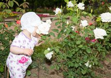 Little cute child girl with flower on nature. Stock Images