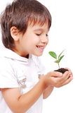 Little cute child holding green plant in hands Royalty Free Stock Photos
