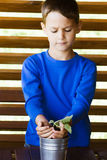 Little cute child holding green plant in hands. Cute child holding green plant in hands Royalty Free Stock Photos