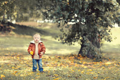 Little cute child with yellow a leaf of the tree in the autumn Royalty Free Stock Image