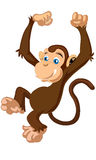 Little cute funny cartoon brown monkey vector Stock Photography