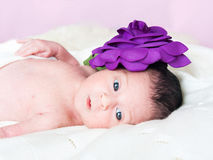 Little cute gir Royalty Free Stock Photos