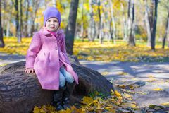 Little cute girl in autumn park on sunny day Stock Image
