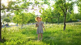 A little European girl blows fluffy seeds from a white dandelion. Little cute girl dressed in a gray dress and a hat blows fluffy seeds from a dandelion.Happy stock video