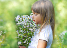 Little cute girl with flower. Little cute girl with wild flower on a meadow, soft focus Stock Image