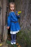 Little cute girl having fun in wonderful autumn Stock Images