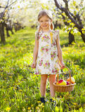 Little cute girl holding a basket with red apples Royalty Free Stock Photo