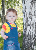 The little  cute girl near birch tree Royalty Free Stock Image