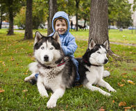 Little cute girl playing with husky dog outside in green park Royalty Free Stock Photo