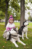 Little cute girl playing with husky dog outside in green park Stock Image