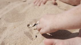 Little cute girl playing with sand and seashells on the beach. Close up in UHD stock video footage