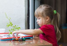 Little cute girl playing table play outside Stock Photo